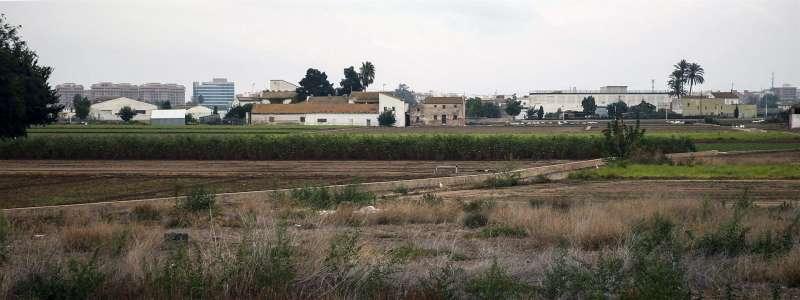 En la imagen, una vista general de la huerta de Alboraya, Valencia, con un campo abandonado en primer plano. Archivo/EFE/Kai Försterling