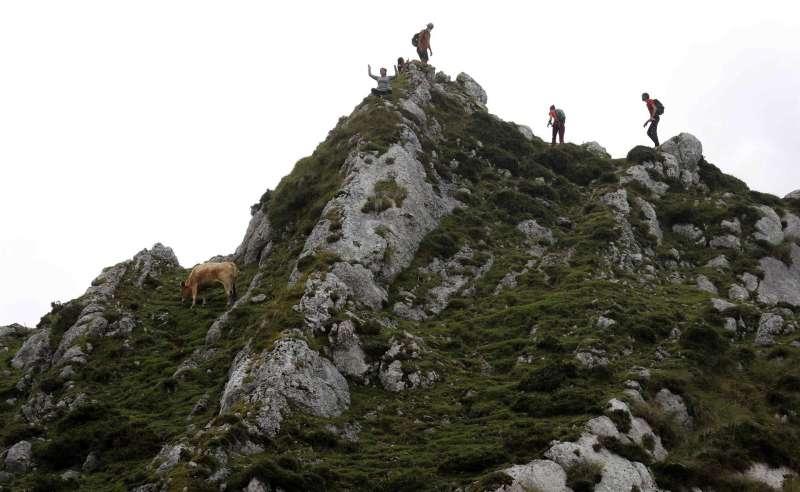 Turistas haciendo una ruta por los Lagos de Covadonga, en el Parque Nacional de Picos de Europa, Asturias.