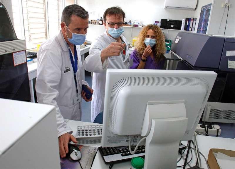 Los investigadores Fabián Tarín (c), Paula Piñero y Francisco Marco. EFE