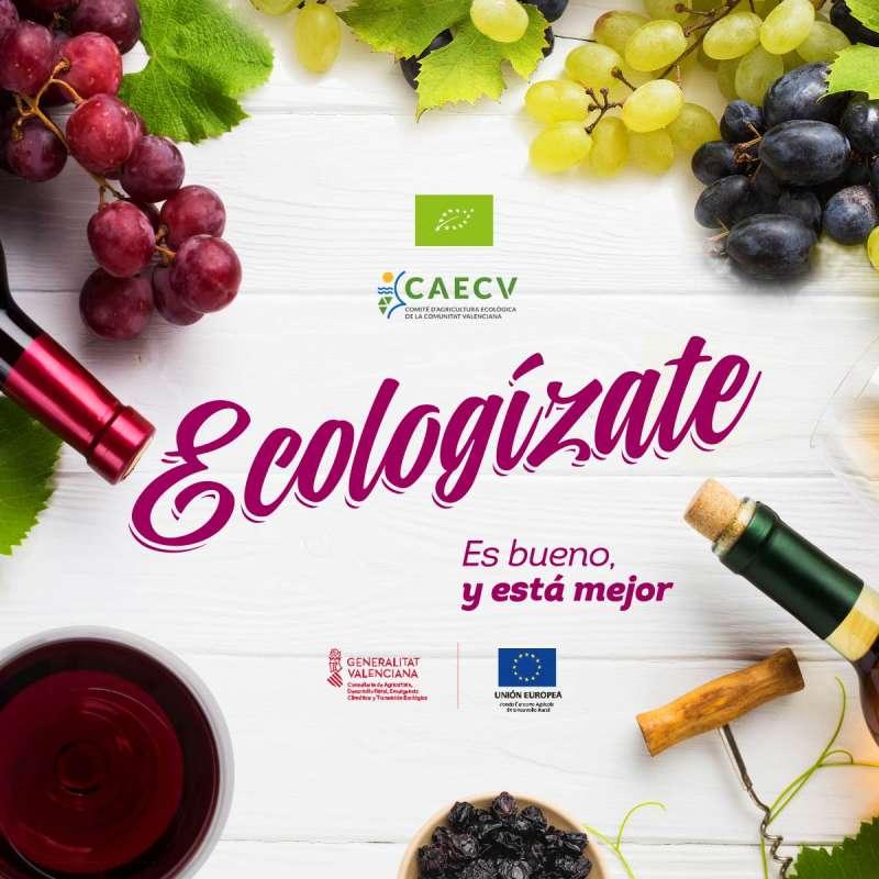 Ecologízate