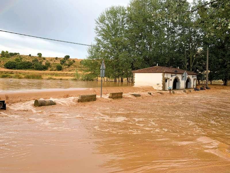 Los efectos de la tormenta fueron devastadores para la agricultura del municipio. / EPDA