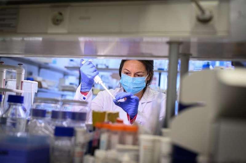 Laboratorio de una empresa de biotecnología. EFE/Archivo